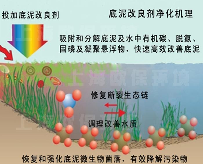 1、底泥改良劑簡介 底泥改良劑,是一種針對水體底泥處理的活菌降解型復合產品,具有改善調整生態結構、底泥治理效果明顯、對環境無害、無二次污染等特點,廣泛應用于河道、湖泊、養殖塘等自然泥地水體底泥改善。配套其他水處理設施使用后,可改善底泥微生物結構,逐漸消除底泥中大部分有機物,對底泥進行改良。  2、底泥改良劑調節底泥機理 底泥改良劑,調節底泥機理在于:好氧時以芽孢桿菌、硝化細菌等耗氧型活菌為主,對底泥進行改良,將難分解的大分子物質分解成可利用的小分子物質,產生多種有機酸、酶、生理活性等物質及其它多種容易被利