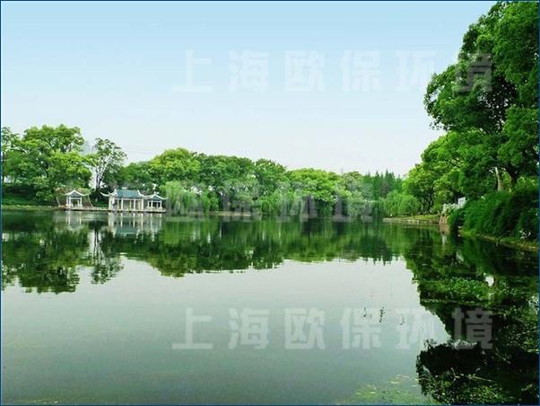景观水处理,生态浮岛