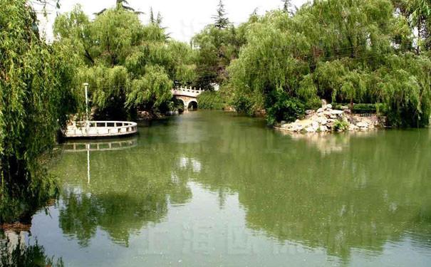 不合理的水體設計造成了景觀水污染