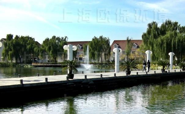 浮水喷泉式曝气机在社区人工湖中应用