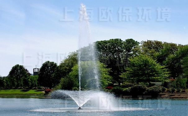 浮水喷泉式曝气机带中心水柱