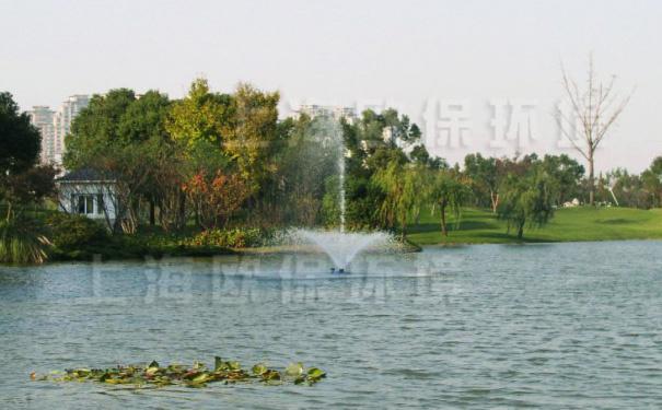 安装浮水喷泉式曝气机后,蓝藻消失,水质改善
