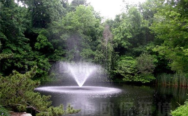 浮水喷泉式曝气机安装使用60天后,建立生态平衡