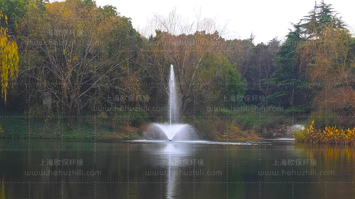 喷泉曝气机(FANS)