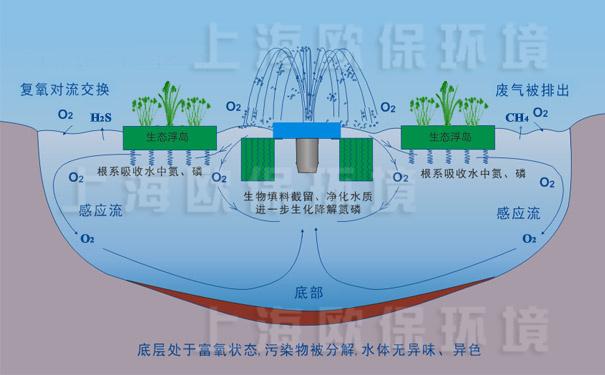 氧化塘增容净化装置-工作原理图