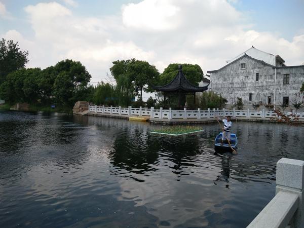 深圳观澜河整治成效显著 拟建人工湿地公园