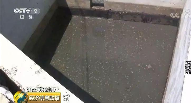 27 一家海带厂多个排污口黑臭水入渤海