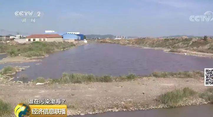 31 入海河流黑臭变红水质多项指数超标