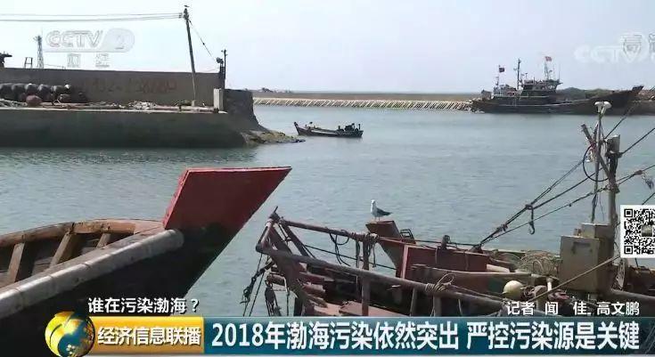12 渤海污染依然突出严控污染源是关键