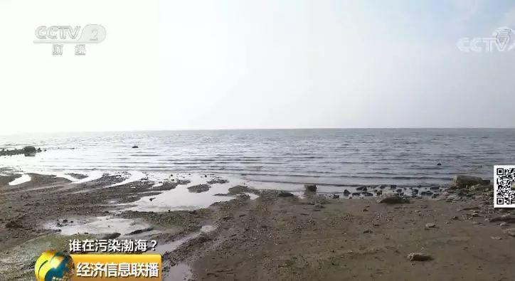 13 渤海污染依然突出严控污染源是关键