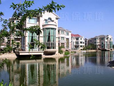 项目名称:上海世茂湖滨花园人工湖治理工程