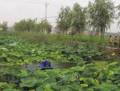 项目名称:泰州瞿沈村农村污水处理工程