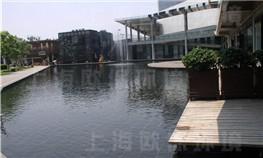 上海碧云体育休闲中心景观鱼池水处理