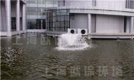 上海中钞油墨景观水池水处理