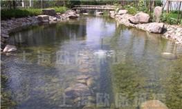 上海南郊花园人工湖水处理