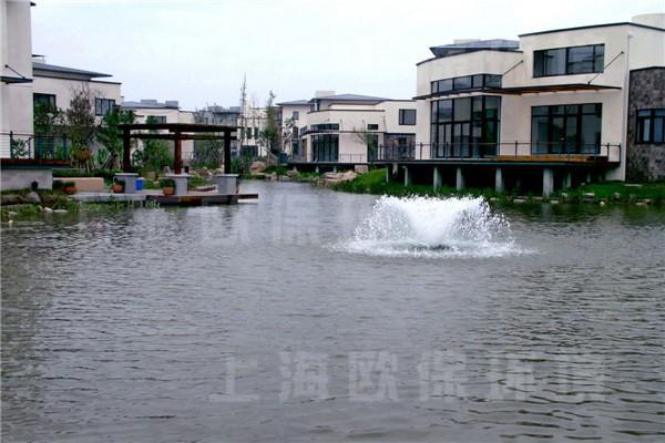 上海金地安布瓦人工湖水处理