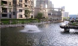 上海当代清水园景观湖治理