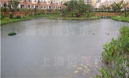 昆明玫瑰园人工湖水处理