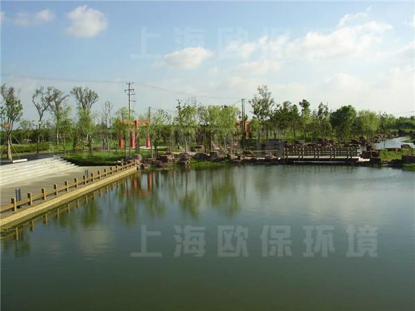 上海安亭新镇景观湖治理
