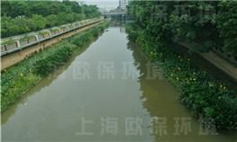 广州汾江河治理