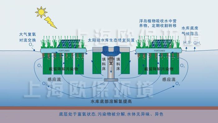 生态浮岛设计示意图