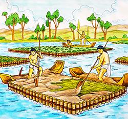 【视频】<b>浮田型漂浮湿地</b>-湿地与浮岛技术的组合